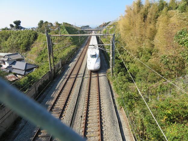 Photos: 興国寺城(沼津市)東海道新幹線