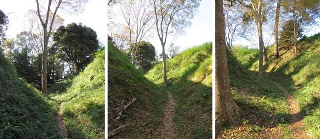 興国寺城(沼津市)空堀