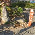 Photos: 富士山本宮浅間大社西鳥居外(富士宮市)信長富士見石