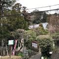 杉本城/杉本寺(鎌倉市)