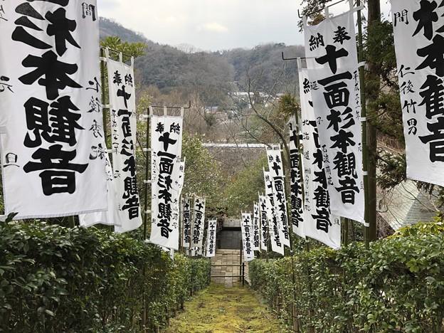 杉本城/杉本寺(鎌倉市)本堂前より