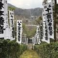 Photos: 杉本城/杉本寺(鎌倉市)本堂前より