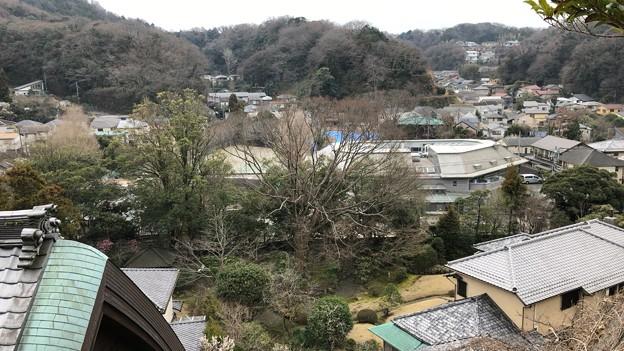 Photos: 杉本城/杉本寺(鎌倉市)推定縄張