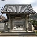 Photos: 光明寺(鎌倉市)惣門