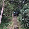 Photos: 住吉城(逗子市)住吉神社