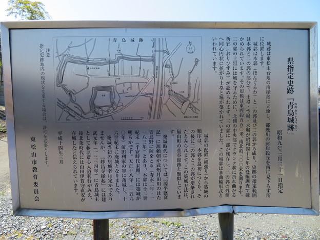 青鳥城(東松山市)