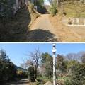 Photos: 青鳥城(東松山市)土塁