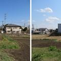 Photos: 青鳥城(東松山市)南、縄張外?