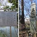 Photos: 青鳥城(東松山市)虎御石(応安期 板碑)