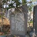 源氏三代供養塔(嵐山町)