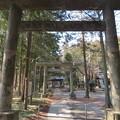 鎌形八幡神社(嵐山町)石鳥居