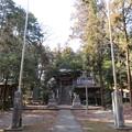 鎌形八幡神社(嵐山町)参道