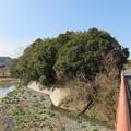 Photos: 班渓寺(嵐山町)都幾川 班渓寺橋