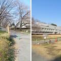 菅谷館(嵐山町)二郭水堀