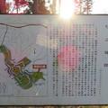 杉山城(嵐山町)