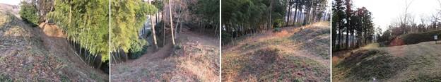 Photos: 杉山城外郭(嵐山町)犬走