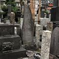 Photos: 善性寺(東日暮里)烈士彰義隊 亀田氏・岸氏之碑