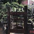 Photos: 小野照崎神社(下谷)富士塚
