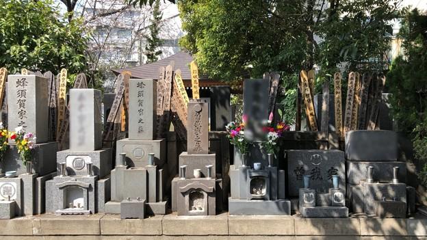 海禅寺(台東区)御子孫墓