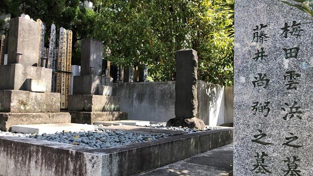 海禅寺(台東区)梅田雲浜・藤井直弼墓地