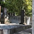 Photos: 海禅寺(台東区)梅田雲浜・藤井直弼墓地