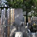 海禅寺(台東区)梅田雲浜墓