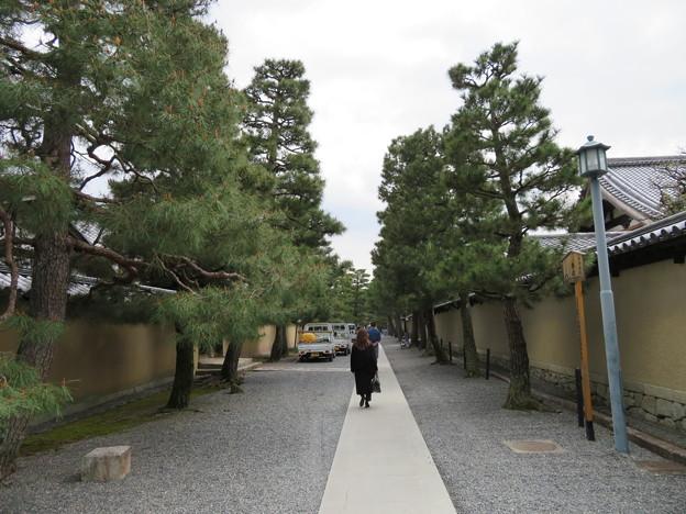 大徳寺(京都市北区)