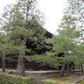 大徳寺(京都市北区)法堂