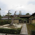 Photos: 大徳寺(京都市北区)真珠庵