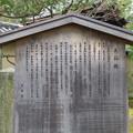Photos: 大徳寺塔頭(京都市北区)大仙院