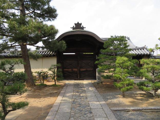 大徳寺塔頭(京都市北区)総見院