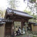 Photos: 大徳寺塔頭(京都市北区)高桐院