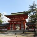 Photos: 今宮神社(京都市北区)楼門