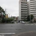 Photos: 15.04.07.一條戻橋前(京都市上京区)