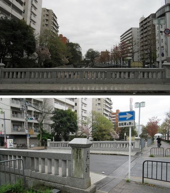 15.04.07.戻橋・堀川(上京区)