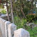 Photos: 応仁の乱勃発地(御靈神社(上御霊神社)。上京区)