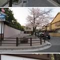 Photos: 19.04.09.応仁の乱激戦地(上京区)北向き