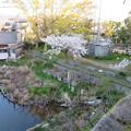 Photos: 淀城本丸北西隅櫓(伏見区淀本町)より土橋跡
