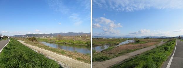 Photos: 桂川(伏見区)鳥羽街道