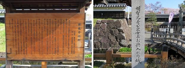 勝竜寺城(長岡京市)本丸