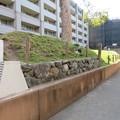 Photos: 開田城(長岡京市)土塁