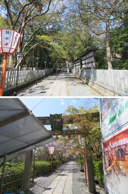 長岡天満宮(長岡京市)参道