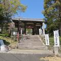 Photos: 宝積寺(乙訓郡大山崎町)仁王門
