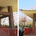 Photos: 19.04.09.宝積寺(乙訓郡大山崎町)待宵の鐘