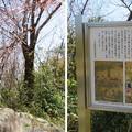 Photos: 天王山 山崎城(大山崎町)山崎合戦之地碑