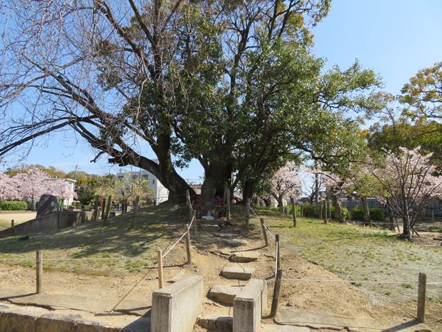 19.04.09.阿弖流為・母禮の塚(枚方市営 牧野公園)