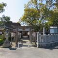 片埜神社(枚方市)