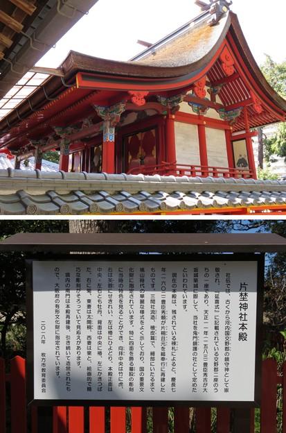 片埜神社(枚方市)本殿
