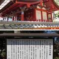 Photos: 片埜神社(枚方市)本殿