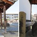 Photos: 崇禅寺(大阪市東淀川区)遠城兄弟供養塔